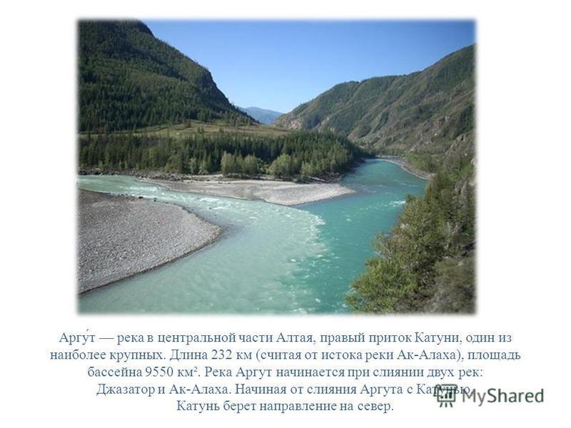 Аргу́т река в центральной части Алтая, правый приток Катуни, один из наиболее крупных. Длина 232 км (считая от истока реки Ак-Алаха), площадь бассейна 9550 км². Река Аргут начинается при слиянии двух рек: Джазатор и Ак-Алаха. Начиная от слияния Аргут