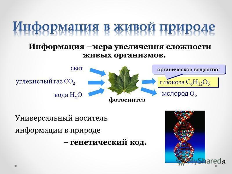 8 Информация –мера увеличения сложности живых организмов. Универсальный носитель информации в природе – генетический код. фотосинтез глюкоза C 6 H 12 O 6 кислород O 2 вода H 2 O углекислый газ CO 2 свет органическое вещество!
