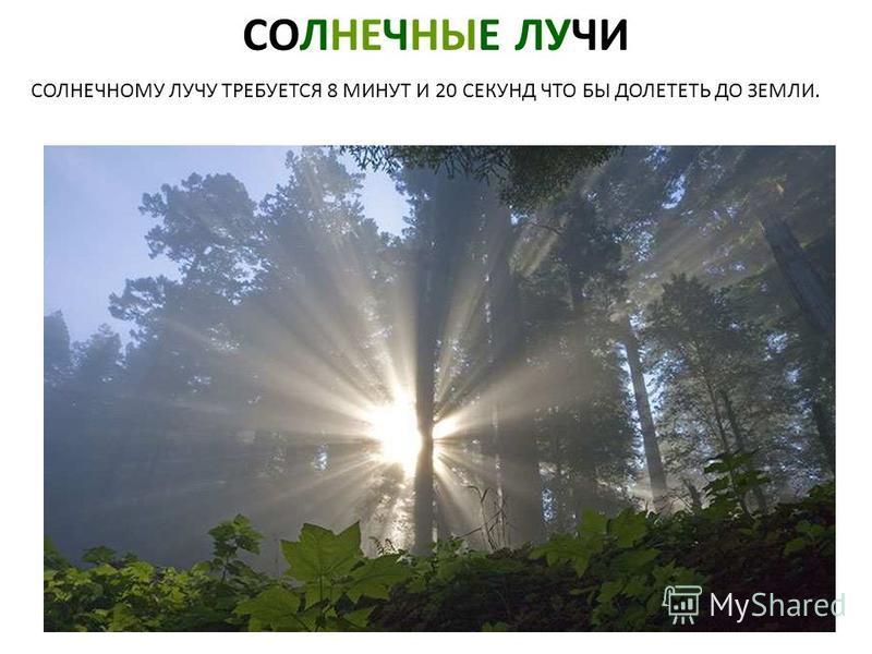 СОЛНЕЧНЫЕ ЛУЧИ СОЛНЕЧНОМУ ЛУЧУ ТРЕБУЕТСЯ 8 МИНУТ И 20 СЕКУНД ЧТО БЫ ДОЛЕТЕТЬ ДО ЗЕМЛИ. Солнечные лучи. Солнечному лучу требуется 8 минут и 20 секунд что бы долететь до земли.