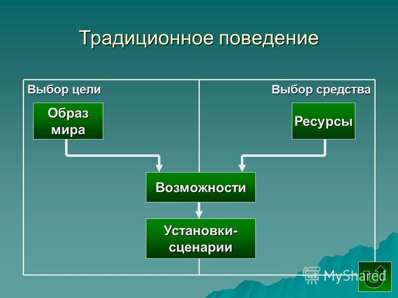Традиционное поведение Выбор цели Выбор средства Образмира Ресурсы Возможности Установки-сценарии