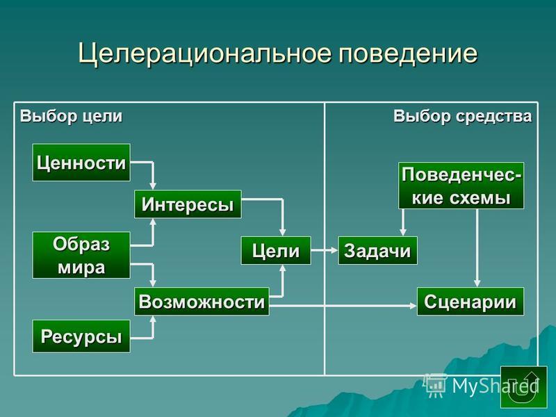 Целерациональное поведение Выбор цели Выбор средства Ценности Образмира Ресурсы Возможности Сценарии Интересы Цели Задачи Поведенчес- кие схемы
