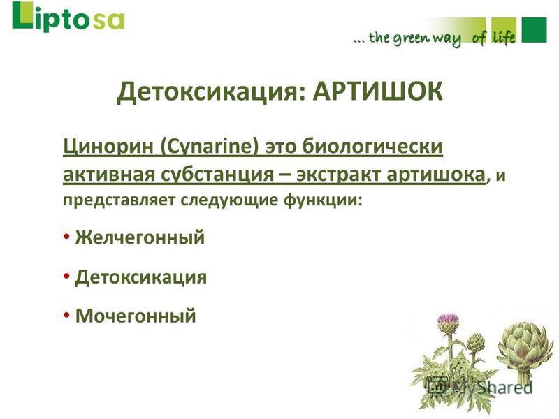 Детоксикация: АРТИШОК … the green way of life Цинорин (Cynarine) это биологически активная субстанция – экстракт артишока, и представляет следующие функции: Желчегонный Детоксикация Мочегонный