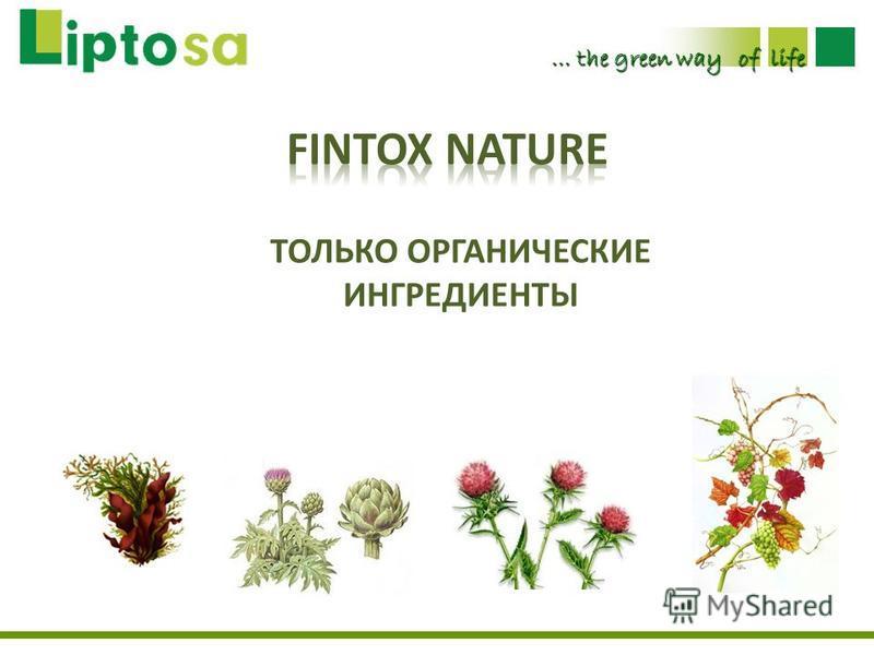 … the green way of life ТОЛЬКО ОРГАНИЧЕСКИЕ ИНГРЕДИЕНТЫ