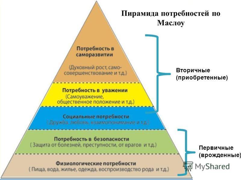 Вторичные (приобретенные) Первичные (врожденные) Пирамида потребностей по Маслоу