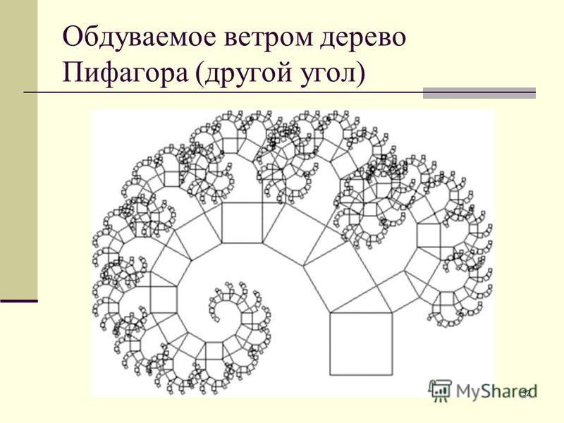 32 Обдуваемое ветром дерево Пифагора (другой угол)