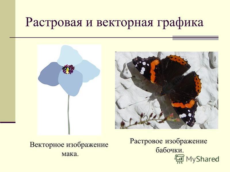 4 Растровая и векторная графика Векторное изображение мака. Растровое изображение бабочки.