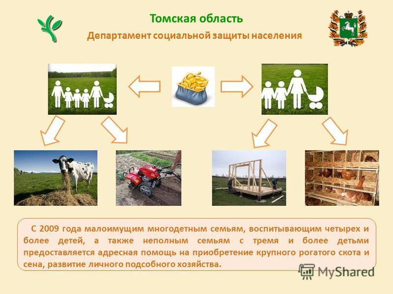 Департамент социальной защиты населения Томская область С 2009 года малоимущим многодетным семьям, воспитывающим четырех и более детей, а также неполным семьям с тремя и более детьми предоставляется адресная помощь на приобретение крупного рогатого с