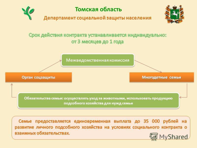 Томская область Департамент социальной защиты населения Межведомственная комиссия Обязательства семьи: осуществлять уход за животными, использовать продукцию подсобного хозяйства для нужд семьи