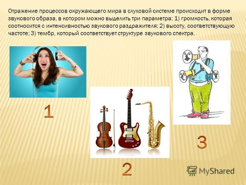 Отражение процессов окружающего мира в слуховой системе происходит в форме звукового образа, в котором можно выделить три параметра: 1) громкость, которая соотносится с интенсивностью звукового раздражителя; 2) высоту, соответствующую частоте; 3) тем