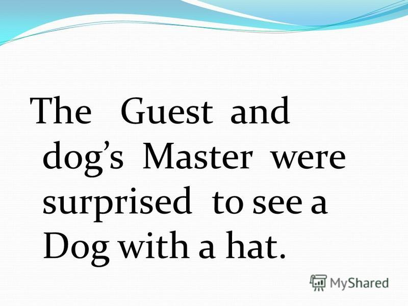 The Guest and dogs Master were surprised to see a Dog with a hat.