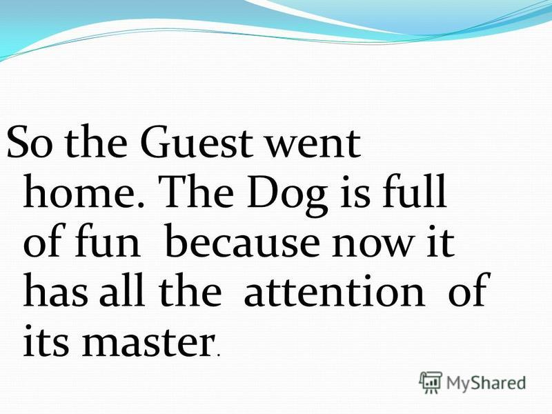 So the Guest went home. The Dog is full of fun because now it has all the attention of its master.