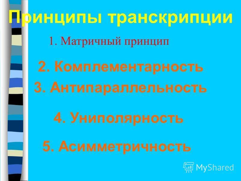 Принципы транскрипции 2. Комплементарность 3. Антипараллельность 5. Асимметричность 4. Униполярность 1. Матричный принцип
