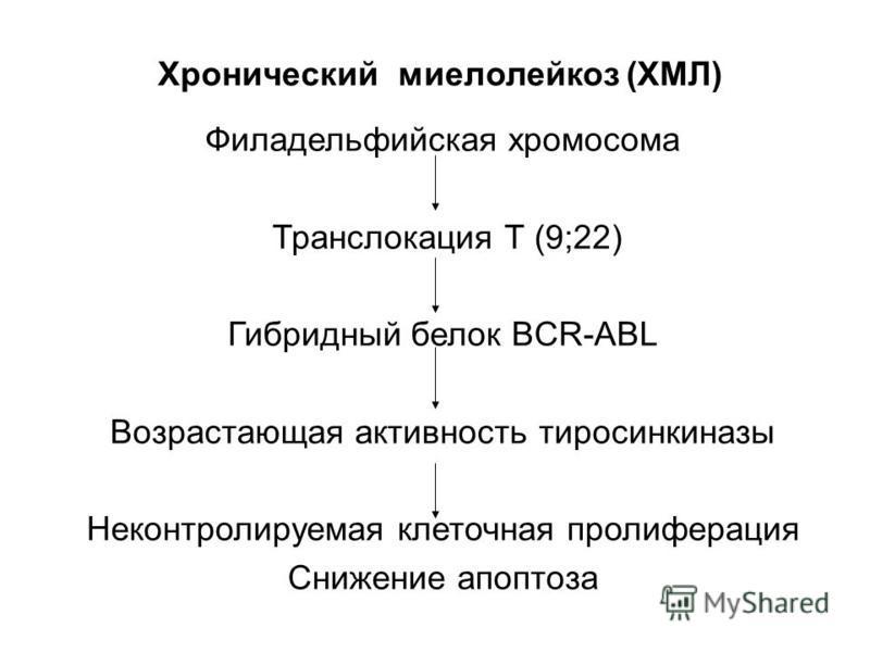 Хронический миелолейкоз (ХМЛ) Филадельфийская хромосома Транслокация Т (9;22) Гибридный белок BCR-ABL Возрастающая активность тиросинкиназы Неконтролируемая клеточная пролиферация Снижение апоптоза