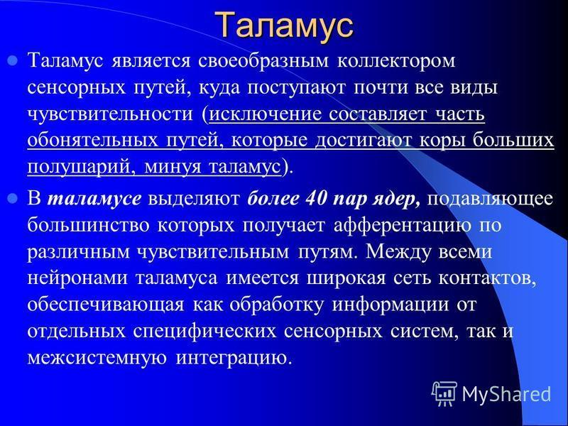 Таламус Таламус является своеобразным коллектором сенсорных путей, куда поступают почти все виды чувствительности (исключение составляет часть обонятельных путей, которые достигают коры больших полушарий, минуя таламус). В таламусе выделяют более 40