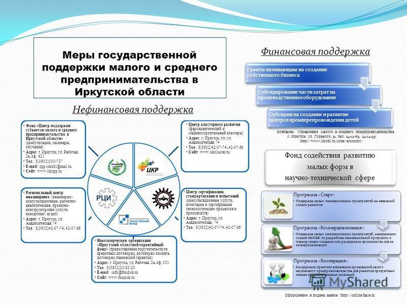 Меры государственной поддержки малого и среднего предпринимательства в Иркутской области Нефинансовая поддержка Финансовая поддержка Гранты начинающим на создание собственного бизнеса Субсидирование части затрат на производственное оборудование Субси
