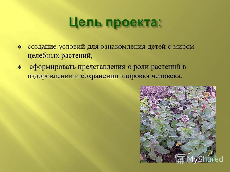 создание условий для ознакомления детей с миром целебных растений, сформировать представления о роли растений в оздоровлении и сохранении здоровья человека.