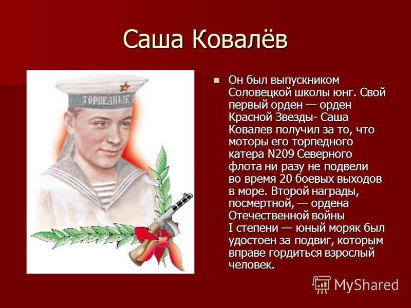 Саша Ковалёв Он был выпускником Соловецкой школы юнг. Свой первый орден орден Красной Звезды- Саша Ковалев получил за то, что моторы его торпедного катера N209 Северного флота ни разу не подвели во время 20 боевых выходов в море. Второй награды, посм