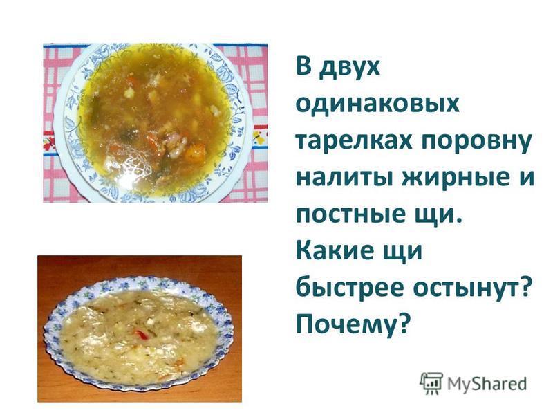 В двух одинаковых тарелках поровну налиты жирные и постные щи. Какие щи быстрее остынут? Почему?