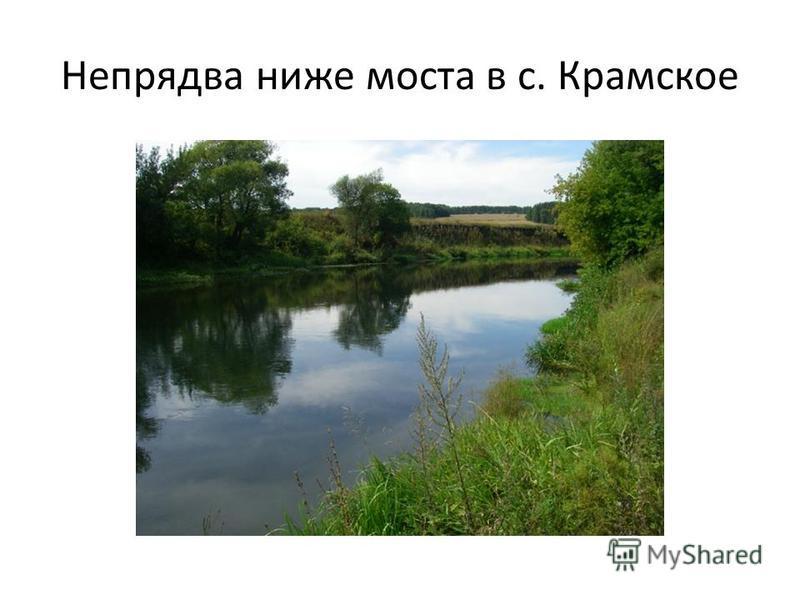 Непрядва ниже моста в с. Крамское