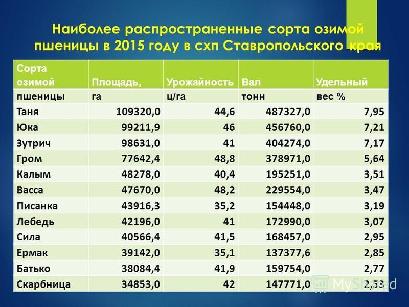 Наиболее распространенные сорта озимой пшеницы в 2015 году в схп Ставропольского края Сорта озимой Площадь,Урожайность Вал Удельный пшеницыгац/гатоннвес % Таня 109320,044,6487327,07,95 Юка 99211,946456760,07,21 Зутрич 98631,041404274,07,17 Гром 77642