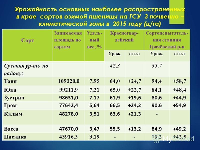 Урожайность основных наиболее распространенных в крае сортов озимой пшеницы на ГСУ 3 почвенно – климатической зоны в 2015 году (ц/га) Сорт Заиимаемая плащадь по сортам Удель- ный вес, % Красногвар- детский Сортоиспытатель- ная станция Грачёвский р-н