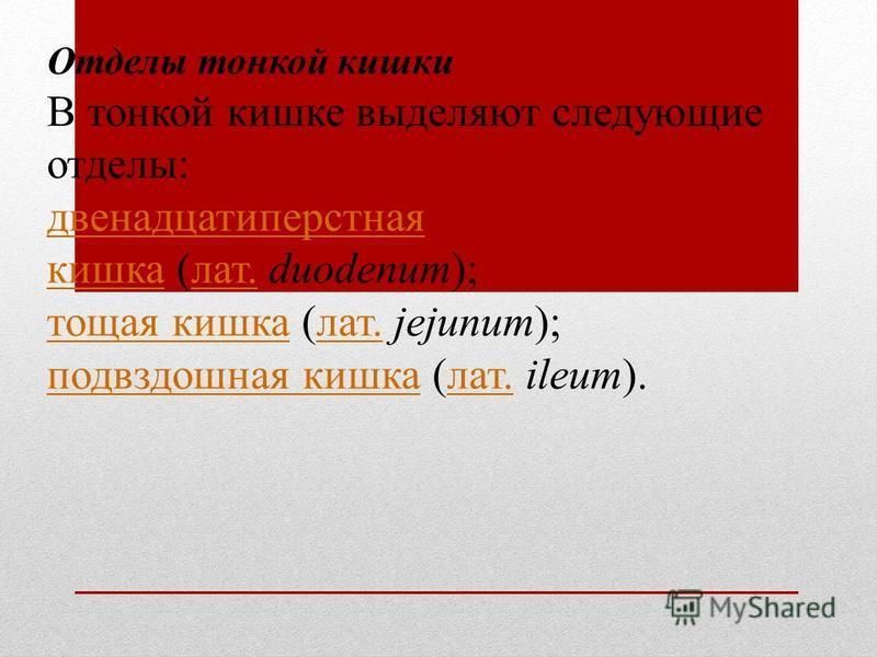 Отделы тонкой кишки В тонкой кишке выделяют следующие отделы: двенадцатиперстная кишка двенадцатиперстная кишка (лат. duodenum);лат. тощая кишка тощая кишка (лат. jejunum);лат. подвздошная кишка подвздошная кишка (лат. ileum).лат.