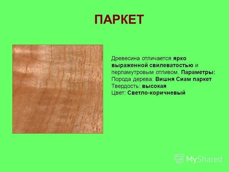 Древесина отличается ярко выраженной свилеватостью и перламутровым отливом. Параметры: Порода дерева: Вишня Сиам паркет Твердость: высокая Цвет: Светло-коричневый ПАРКЕТ