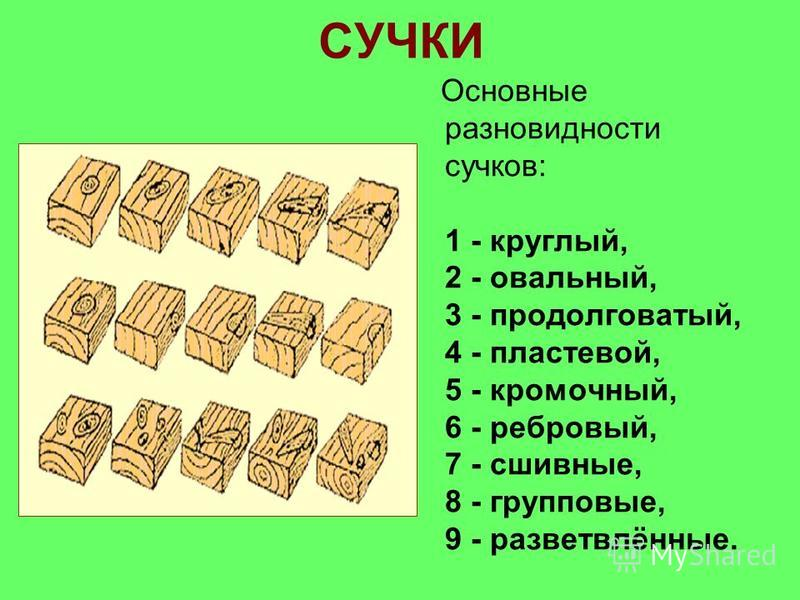 Основные разновидности сучков: 1 - круглый, 2 - овальный, 3 - продолговатый, 4 - пластовой, 5 - кромочный, 6 - ребровый, 7 - сшивные, 8 - групповые, 9 - разветвлённые.