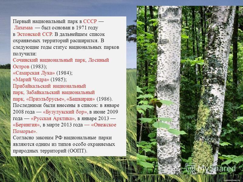 Первый национальный парк в СССР Лахемаа был основан в 1971 году в Эстонской ССР. В дальнейшем список охраняемых территорий расширился. В следующие годы статус национальных парков получили: Сочинский национальный парк, Лосиный Остров (1983); «Самарска