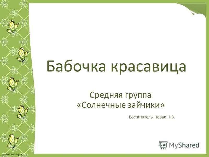 Бабочка красавица Средняя группа «Солнечные зайчики» Воспитатель Новак Н.В.