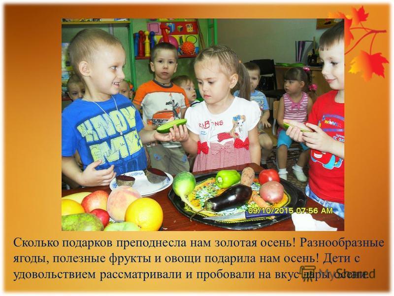 Сколько подарков преподнесла нам золотая осень! Разнообразные ягоды, полезные фрукты и овощи подарила нам осень! Дети с удовольствием рассматривали и пробовали на вкус дары осени.