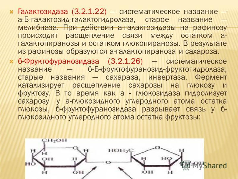 Галактозидаза (3.2.1.22) систематическое название а-Б-галактозид-галактогидролаза, старое название мелибиаза. При действии а-галактозидазы на рафинозу происходит расщепление связи между остатком а- галактопиранозы и остатком глюкопиранозы. В результа