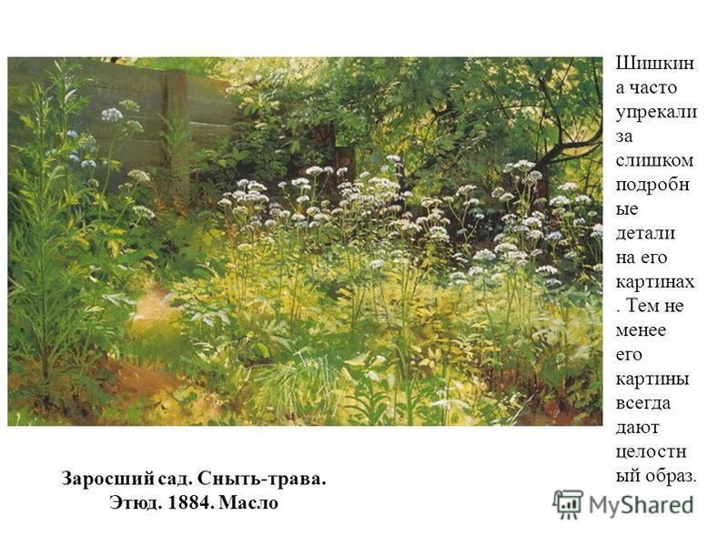 Заросший сад. Сныть-трава. Этюд. 1884. Масло Шишкин а часто упрекали за слишком подробные детали на его картинах. Тем не менее его картины всегда дают целостный образ.