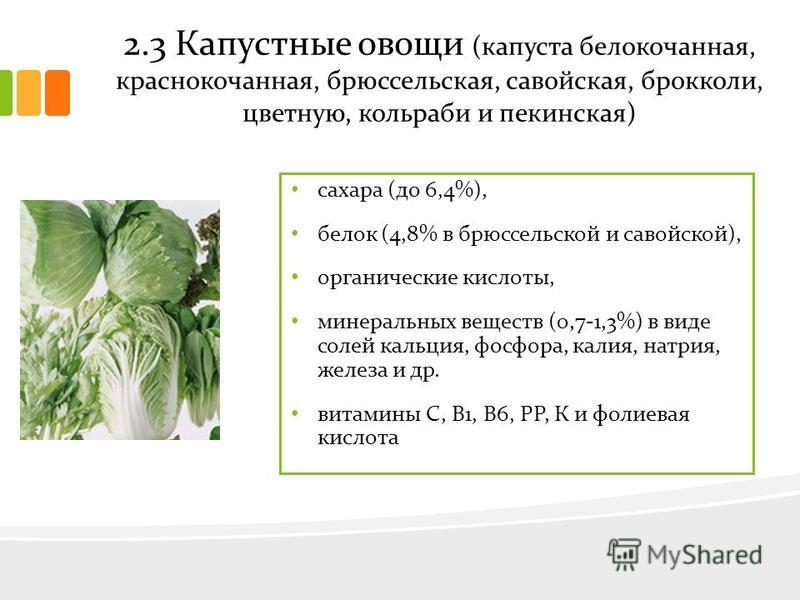 2.3 Капустные овощи (капуста белокочанная, краснокочанная, брюссельская, савойская, брокколи, цветную, кольраби и пекинская) сахара (до 6,4%), белок (4,8% в брюссельской и савойской), органические кислоты, минеральных веществ (0,7-1,3%) в виде солей