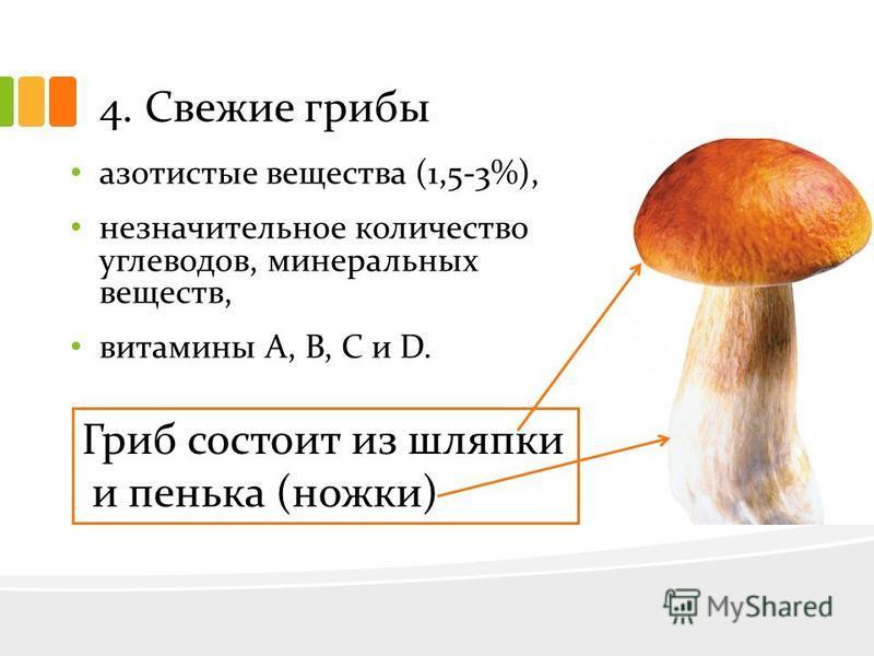 4. Свежие грибы азотистые вещества (1,5-3%), незначительное количество углеводов, минеральных веществ, витамины А, В, С и D. Гриб состоит из шляпки и пенька (ножки)