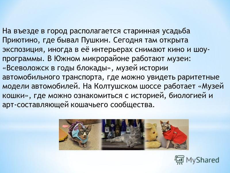 На въезде в город располагается старинная усадьба Приютино, где бывал Пушкин. Сегодня там открыта экспозиция, иногда в её интерьерах снимают кино и шоу- программы. В Южном микрорайоне работают музеи: «Всеволожск в годы блокады», музей истории автомоб