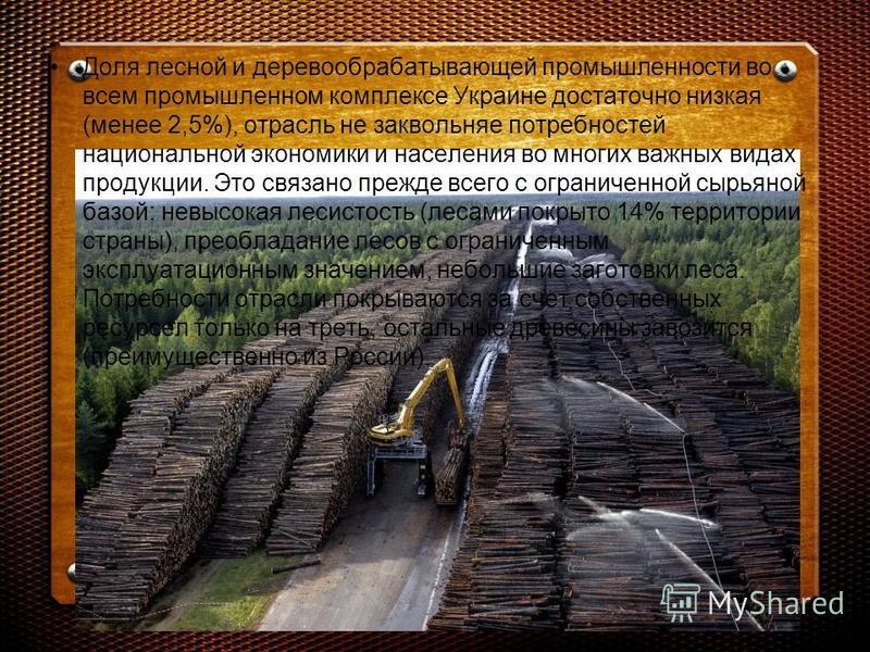 Доля лесной и деревообрабатывающей промышленности во всем промышленном комплексе Украине достаточно низкая (менее 2,5%), отрасль не заквольняе потребностей национальной экономики и населения во многих важных видах продукции. Это связано прежде всего
