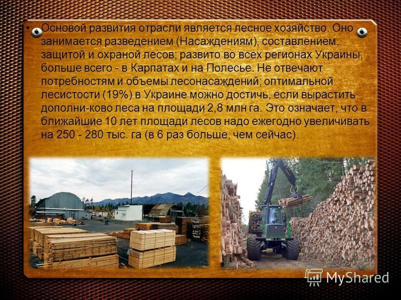 Основой развития отрасли является лесное хозяйство. Оно занимается разведением (Насаждениям), составлением, защитой и охраной лесов; развито во всех регионах Украины, больше всего - в Карпатах и на Полесье. Не отвечают потребностям и объемы лесонасаж