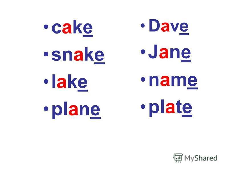 cake snake lake plane Dave Jane name plate