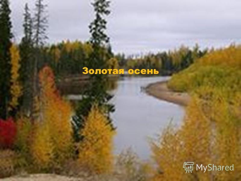 Золотая осень