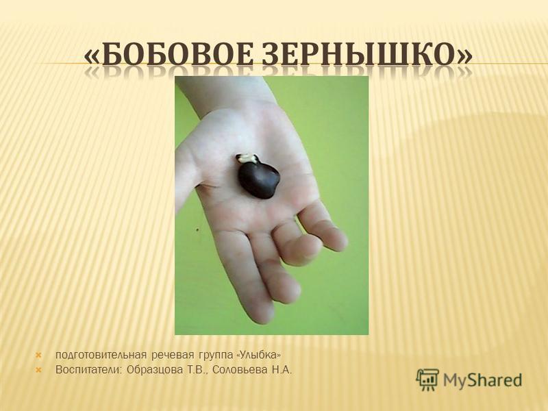 подготовительная речевая группа «Улыбка» Воспитатели: Образцова Т.В., Соловьева Н.А.