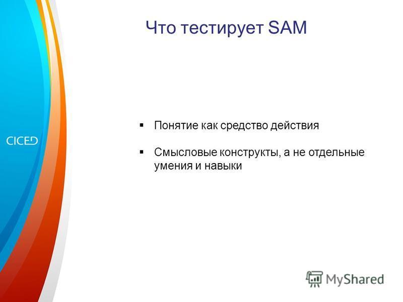 Что тестирует SAM Понятие как средство действия Смысловые конструкты, а не отдельные умения и навыки
