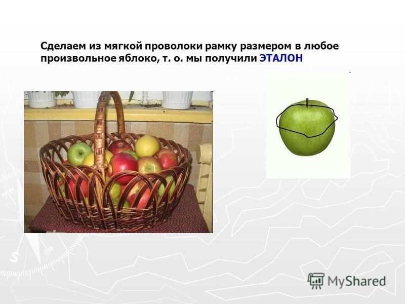 Сделаем из мягкой проволоки рамку размером в любое произвольное яблоко, т. о. мы получили ЭТАЛОН