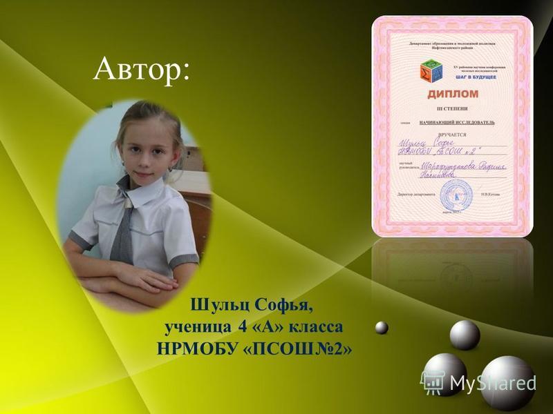 Автор: Шульц Софья, ученица 4 «А» класса НРМОБУ «ПСОШ2»