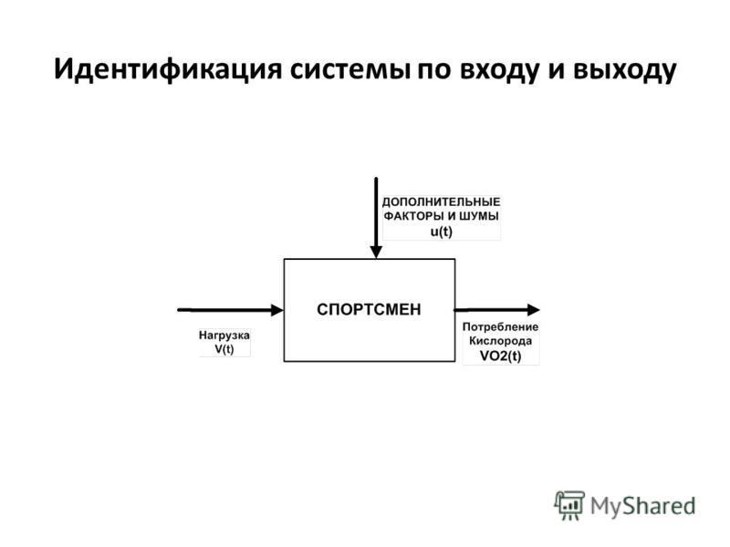 Идентификация системы по входу и выходу
