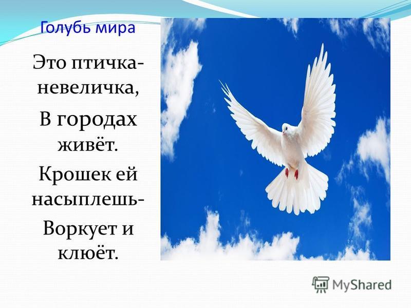 Голубь мира Это птичка- невеличка, В городах живёт. Крошек ей насыплешь- Воркует и клюёт.