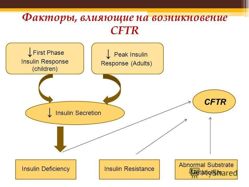 Факторы, влияющие на возникновение CFTR First Phase Insulin Response (children) Peak Insulin Response (Adults) Insulin Secretion CFTR Insulin DeficiencyInsulin Resistance Abnormal Substrate Metabolism