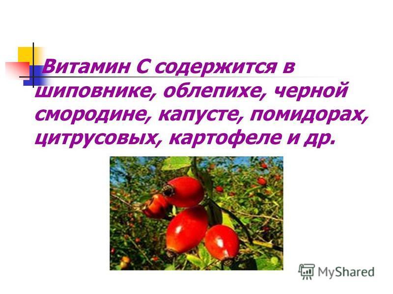 Витамин С содержится в шиповнике, облепихе, черной смородине, капусте, помидорах, цитрусовых, картофеле и др.