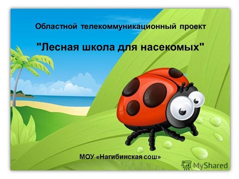 Областной телекоммуникационный проект Лесная школа для насекомых МОУ «Нагибинская сош»