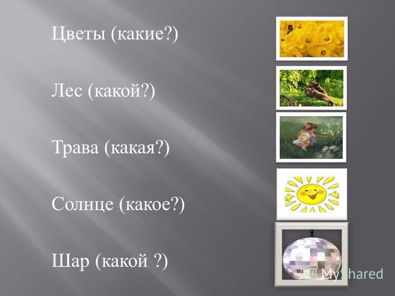 Цветы ( какие ?) Лес ( какой ?) Трава ( какая ?) Солнце ( какое ?) Шар ( какой ?)
